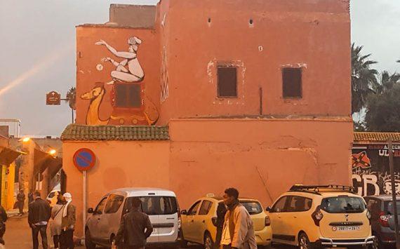 Camel from Marrakech