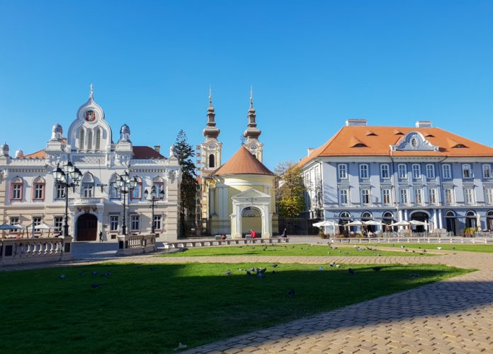 Timisoara-the town of pigeons